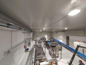 lavori su capannoni industriali (2)